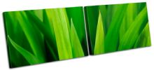 Grass Shoots Floral - 13-1387(00B)-MP14-LO